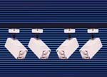 Rail de 4 projecteurs basse tension 50 W