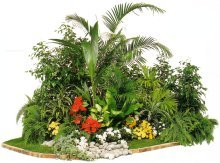 Scéne de jardin